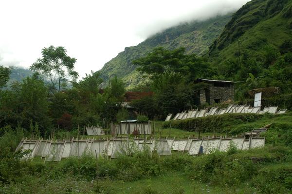 Molino de papel en Kodari - Nepal.